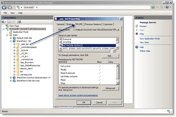Editing a DACL for an IIS Web application