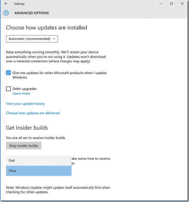 Slow and Fast Ring in Windows 10