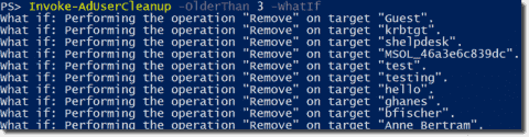 The PowerShell WhatIf parameter