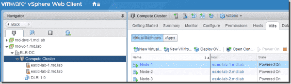 VM and host view in the DRS cluster