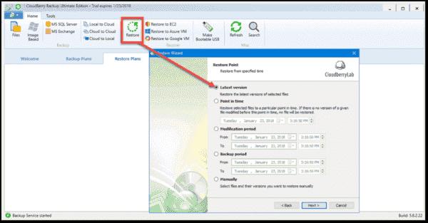 Granular file restore options