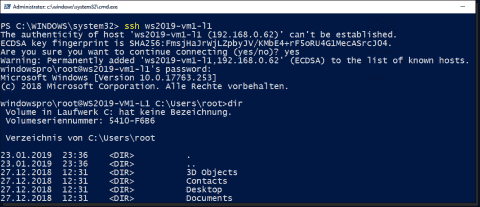Installing OpenSSH on Windows 10 (1803 and higher) and Server 2019