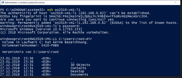 Establish a connection to a freshly installed SSH server