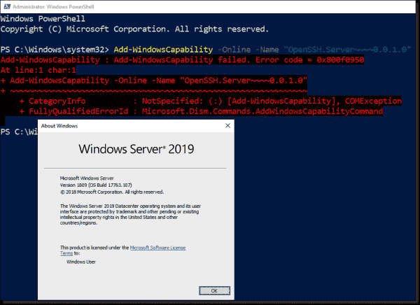 The installation of OpenSSH server fails on earlier builds of Windows Server 2019.