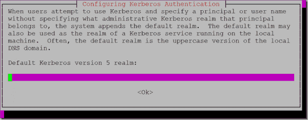 Configuring the Kerberos realm