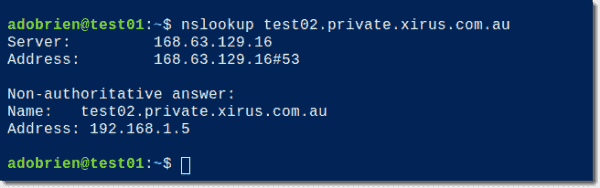 Test Azure private DNS zone