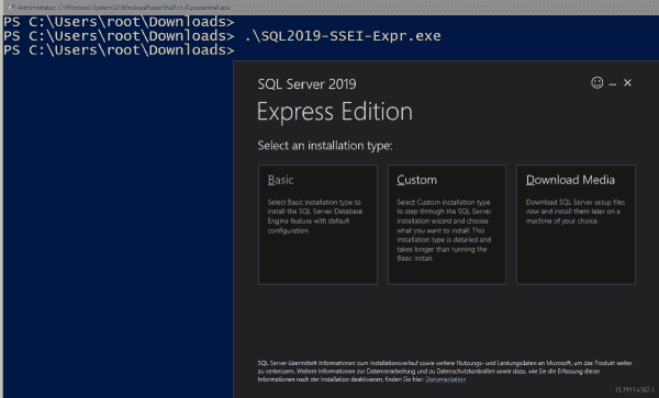 Installation options in the graphical setup for SQL Server 2019