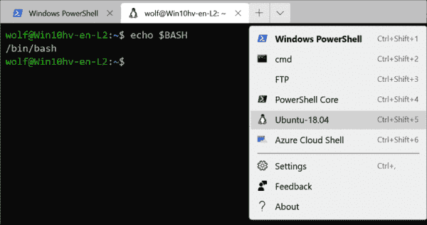 Ubuntu 18.04 on WSL 2 in Windows Terminal