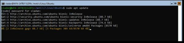 Run a Sudo apt update command