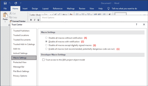 Options for executing macros in MS Word—the value in brackets corresponds to the VBAwarnings registry value