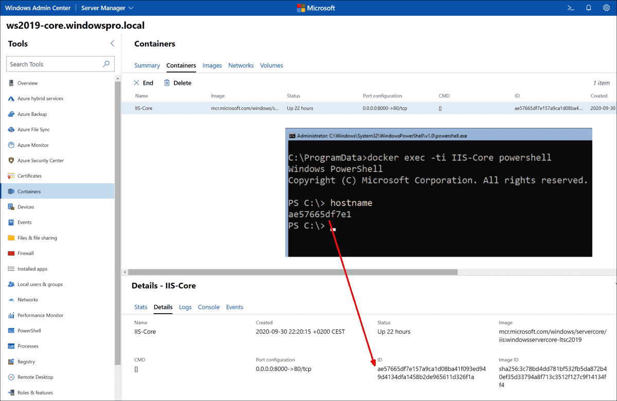 A PowerShell session in the container is obtained via the docker exec