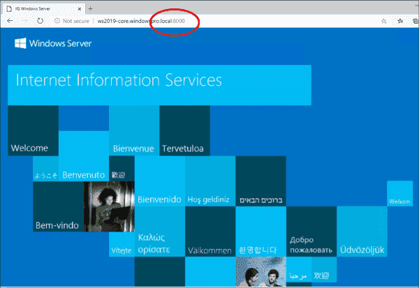 With mapping 8000:80, the start page of the IIS in the container is accessible via port 8000 of the host