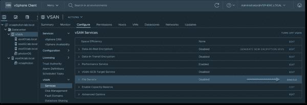 Configure vSAN File Service—Enable