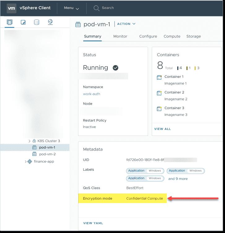 Verifying the encryption mode for the vSphere Confidential Pod