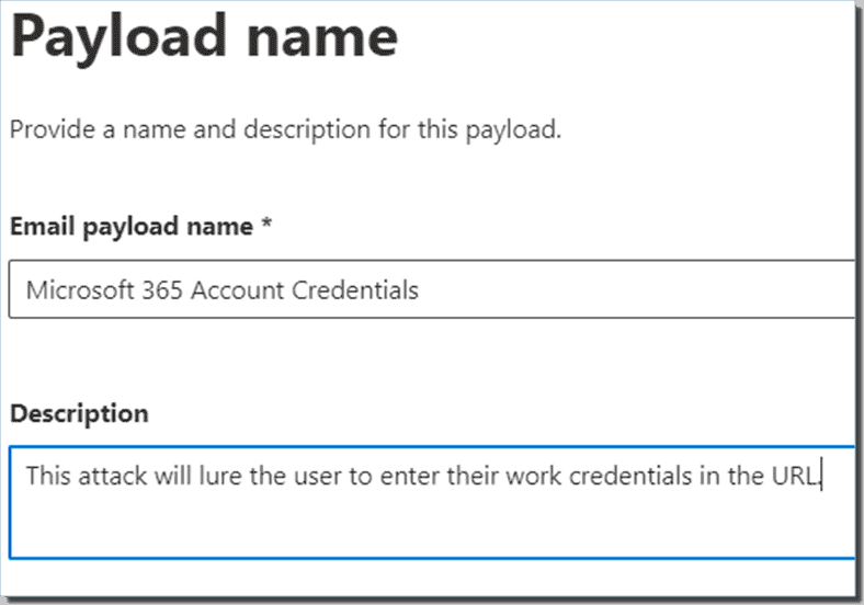 Give the payload a related name and description