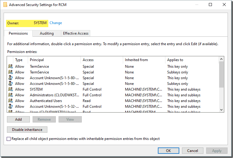 Windows registry key owned by the SYSTEM account